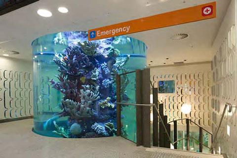 RCH aquarium