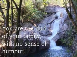 waterfall quote